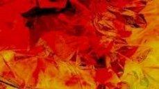 写真・赤と黄色の抽象写真.JPG