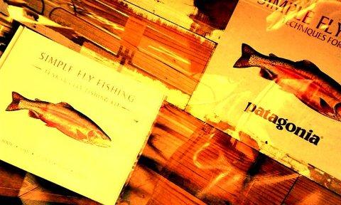 写真・魚.jpg